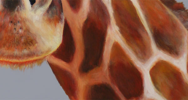 Giraffe - Auftragsarbeit